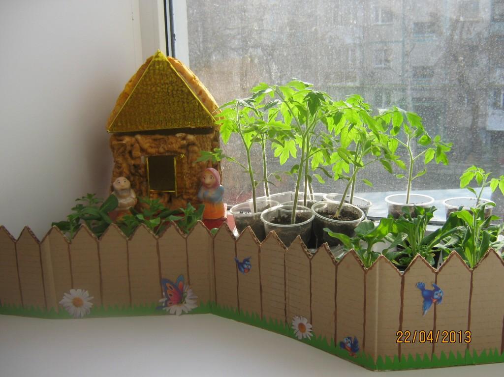 Сад и огород своими руками в детском саду 611
